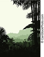 Forest landscape of tropical
