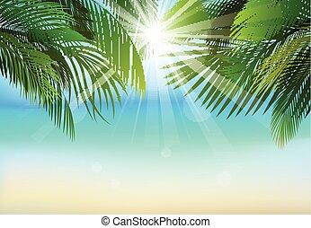 Palm leaf background - Illustration of Palm leaf background...