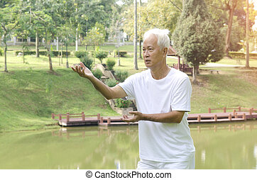 asian senior tai chi outdoor