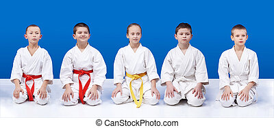 Athletes in karategi sit in pose - Five athletes in karate...