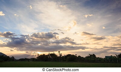 Sunset Clouds in Blue Sky above Rice Field Trees