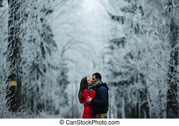 couple walking on a winter park - man and woman walking...