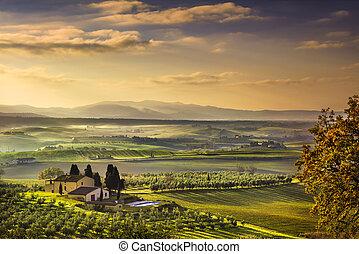 Tuscany Maremma foggy morning, farmland and green fields...