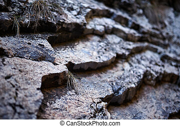 Sedimentary rocks background - Closeup of a sedimentary...