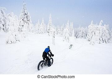 biker in winter, Orlicke Mountains, Czech Republic