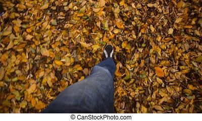 Autumn Feet Walking