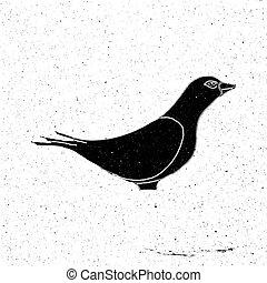 Hand drawn dove