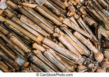 Spanish Alive razor clams shells Navajas on market store...