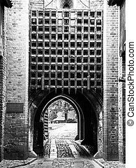 Medieval castle gate with iron bars Black and white image