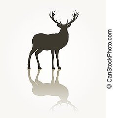 Deer animal silhouette. Reindeer antler, reflection black...