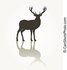 Deer animal silhouette. Reindeer antler, reflection black...