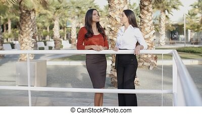 Two businesswoman standing chatting outdoors - Two elegant...