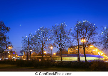 Illuminated trees in city - The illumination on trees at...