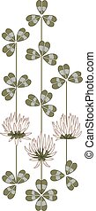 flowers of clover - vector illustration with the flowers of...