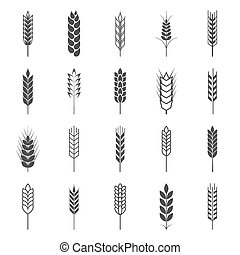 Set of simple wheat ears icons and design elements. Vector...