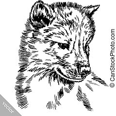 black and white engrave isolated wolf - black and white...