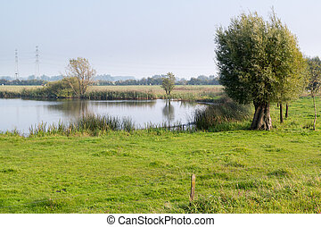 Forelands of River IJssel, Netherlands - Pool and grassland...
