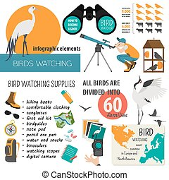 Bird watching infographic template Vector illustration