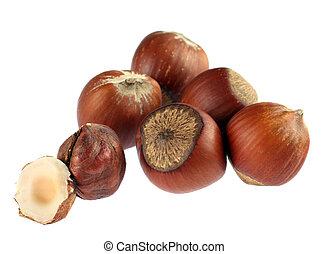 Hazel nut detail - Hazel nut group isolated on white...