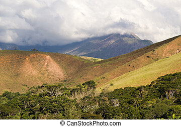 Atlantic Forest remnant - View of a preserved portion of the...