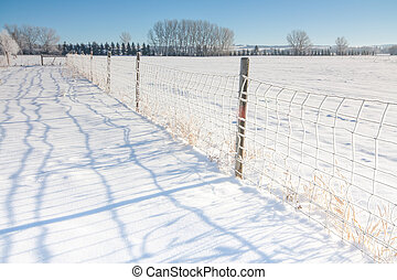 Fence Line Landscape in Snow