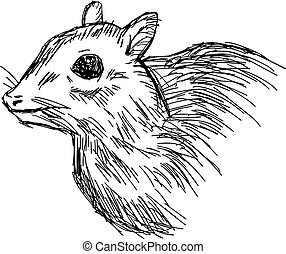 illustration vector hand drawn doodle closeup mouse deer or...