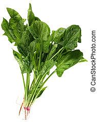 espinafre, folha