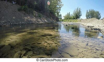 Wild brook water flow in the summer