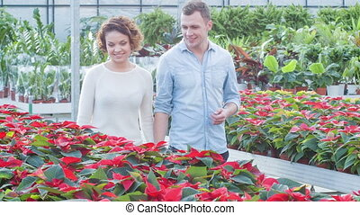 Young couple choosing flowers. - Flower shopping. Young...