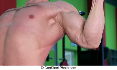 Workout for young bodybuilder - Exercises for arms and back...