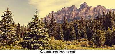 Banff - Castle Mountain in Banff National Park, Canada