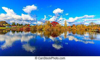Commonwealth Lake Park - Colorful tree leaves by the lake,...