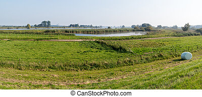 Forelands of River IJssel, Netherlands - Panorama of IJssel...