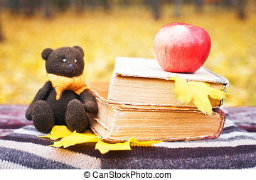 Bear, apple and books on a bench in the park