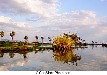 African scenery at Lake Manze - A typical landscape of...