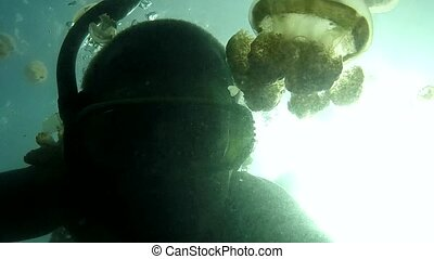 Diver Swimming In Jellyfish Lake - Jellyfish Lake, Palau...