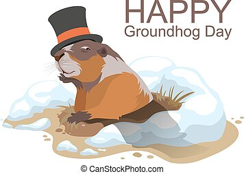 Happy Groundhog Day. Marmot climbed out of hole and yawns....