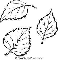 Birch Leaves, Pictogram Set - Set of Plant Pictograms, Birch...