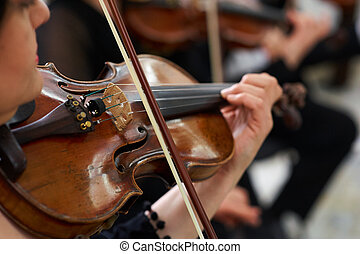 Woman Violinist Playing Violin - Woman Violinist Playing...