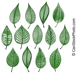 Set of green leaves isolated. Vector illustration.