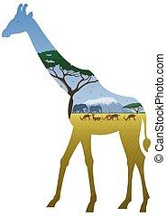 Giraffe Landscape - African landscape in silhouette of...