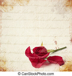 Red rose vintage card