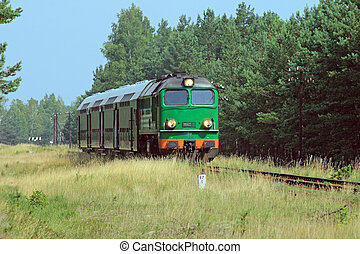 Passenger train passing through the forest