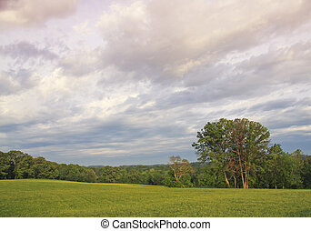 Tennessee Landscape