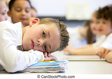 Sruggling At School - A close up shot of a little boy at...