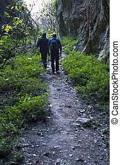 Two Hikers on a trail hiking