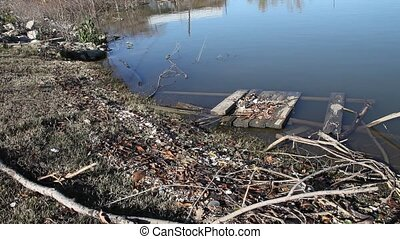 Debris - This is a video of debris on the shore of a flooded...
