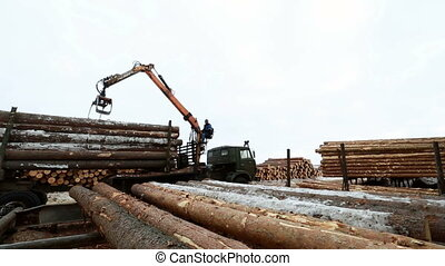 View of man controls crane for loading logs - Woodworking...