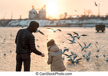 father and son in the winter feeding of birds - winter...