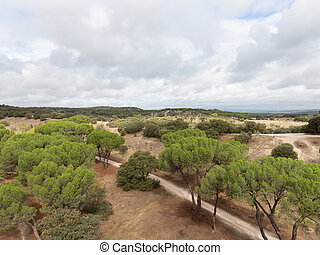 Park, Casa de Campo, Madrid - Beautiful large landscaped...